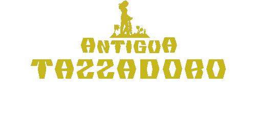 Logo di Antigua Tazzadoro La Casa del Caffè Al Pantheon con la seminatrice